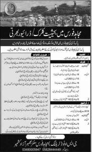 mujahid force job december 2020
