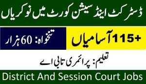 CTSPAK DSC Jobs 2021 District and session court Narowal jobs 2021 download application