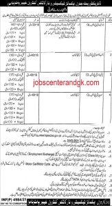 KPexcise jobs 2021