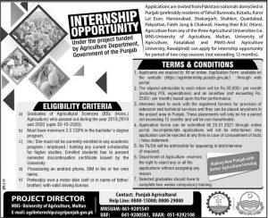 MNS internships 2021 advertisement