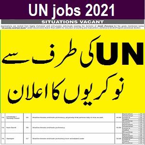 UNDP jobs