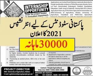 paid internships 2021 Punjab