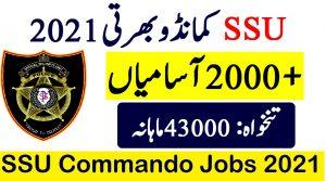 SSU Sindh police jobs january 2021
