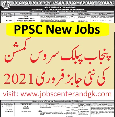 new jobs today in Pakistan