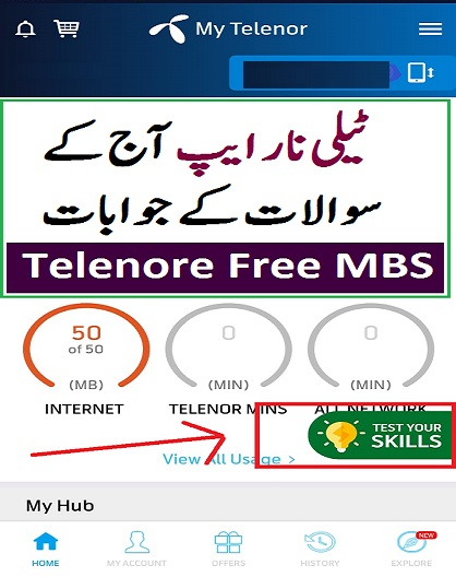 telenor test your skill today answers